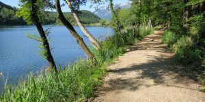 attraverso-i-sentieri-di-monticolo-escursioni-appiano-s.s.d.v.-oltradige-alto-adige